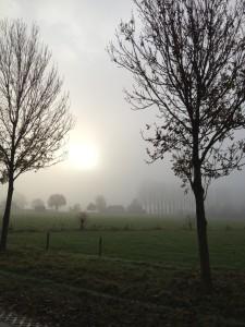 Foto mist met zon