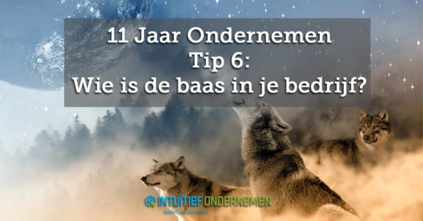 11-tips-6-Wie-is-de-baas