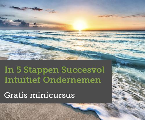 Gratis-minicursus-In-5-Stappen-Succesvol-Intuitief-Ondernemen
