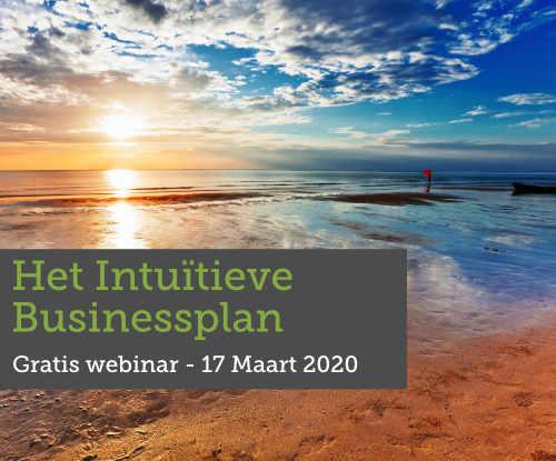 Het intuïtieve businessplan