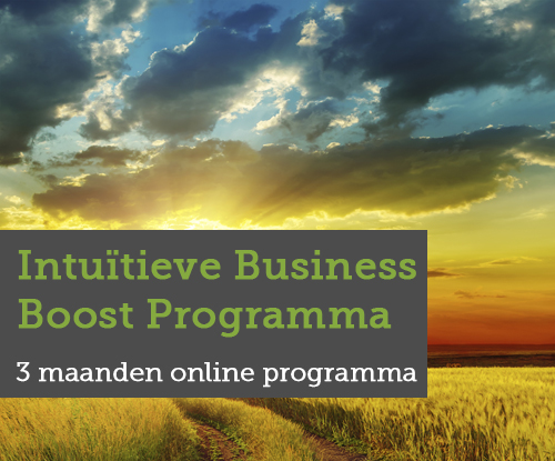 Intuïtieve Business Boost Programma