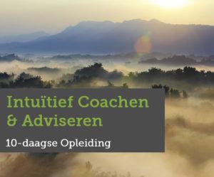 intuitief-coachen-en-adviseren, coachopleiding, opleiding adviseur