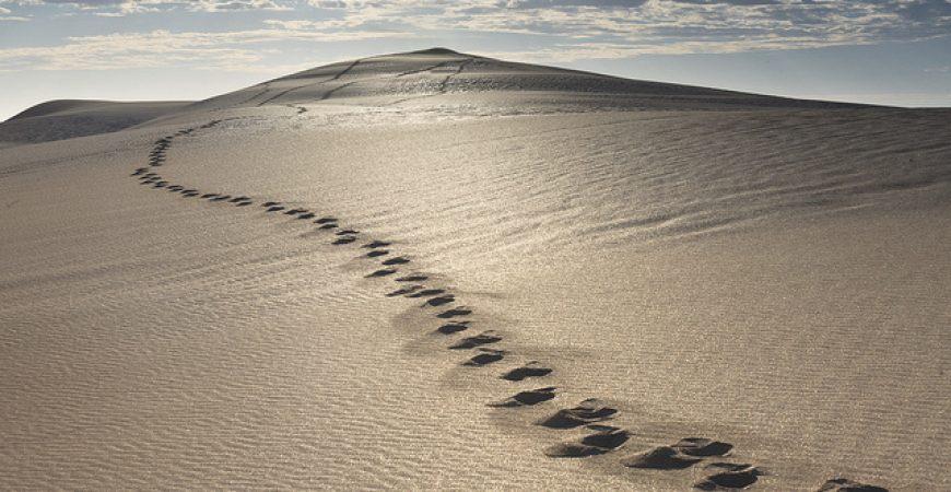 Starten eigen bedrijf - je eigen pad