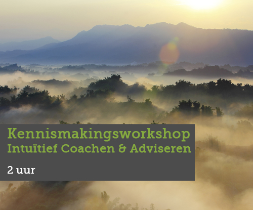 Kennismakingsworkshop-Intuïtief-Coachen-en-Adviseren-breed