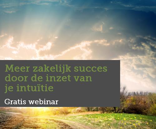 Meer-zakelijk-succes-door-de-inzet-van-je-intuïtie
