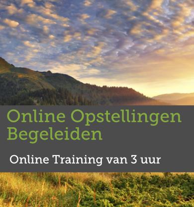 Online Opstellingen Begeleiden