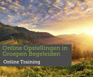 Online trainingen in groepen begeleiden