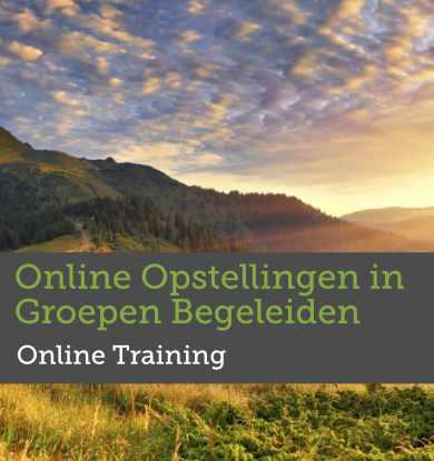 Online Opstellingen in Groepen Begeleiden