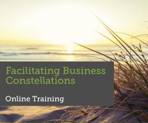 Training Facilitating Business Constellations
