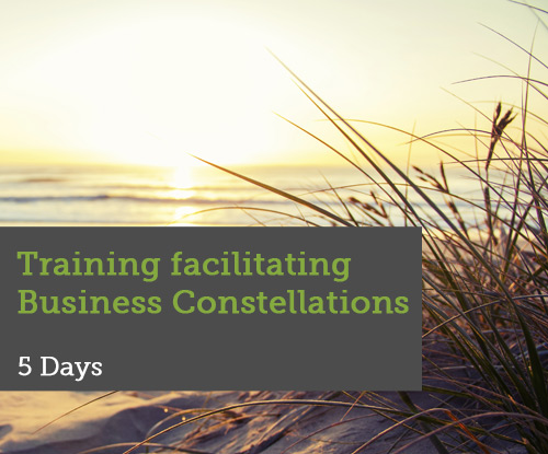 Training-Facilitating-Business-Constellations