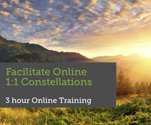 Training Online 1:1 Constellations