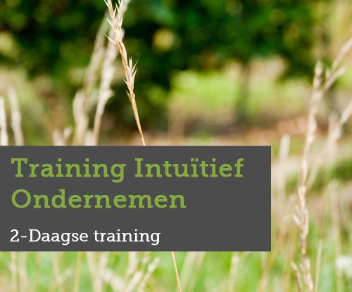 training intuïtief ondernemen, moeiteloos succesvol