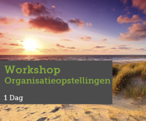workshop-organisatieopstellingen